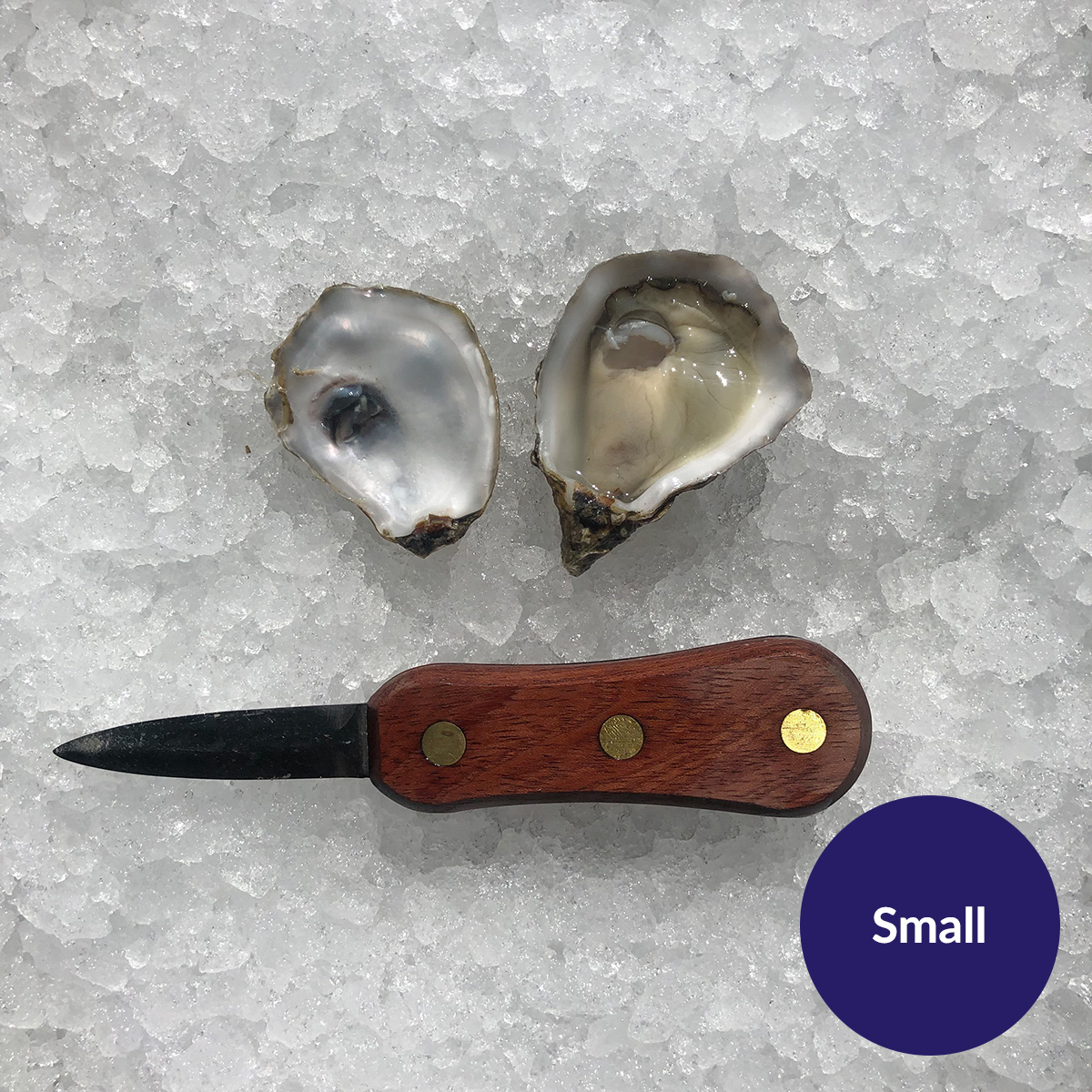 small-open